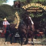 TeamWorkminicover